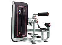腹背肌训练器PSM-GS309